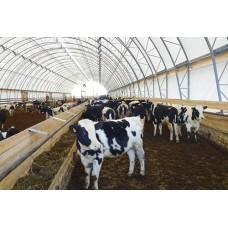 Арочный ангар для животноводства 20 х 15 х 5