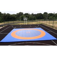Борцовский ковер с олимпийскими кругами 10м*10м