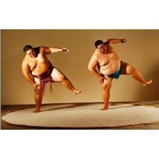 Комплект для сумо - ковер дохё и спортивные маты
