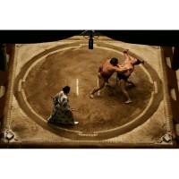 Борцовский ковер Дохё- ковер для сумо 6 м * 6 м