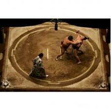 Борцовский ковер Дохё- ковер для сумо 600х600 см