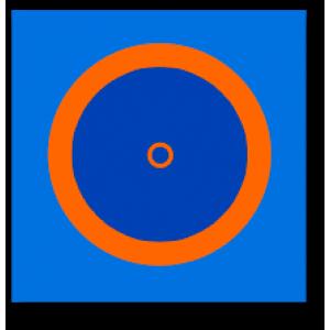 Борцовский ковер трехцветный 10м х 10м, маты 50 мм, под планку