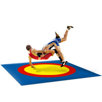 Борцовский ковер с олимпийскими кругами 14 м*14 м