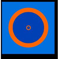 Борцовский ковер  с кругами 10м х 10м (покрытие)